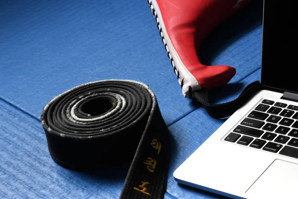 martial arts technology - martial arts gerville stock pictures, royalty-free photos & images