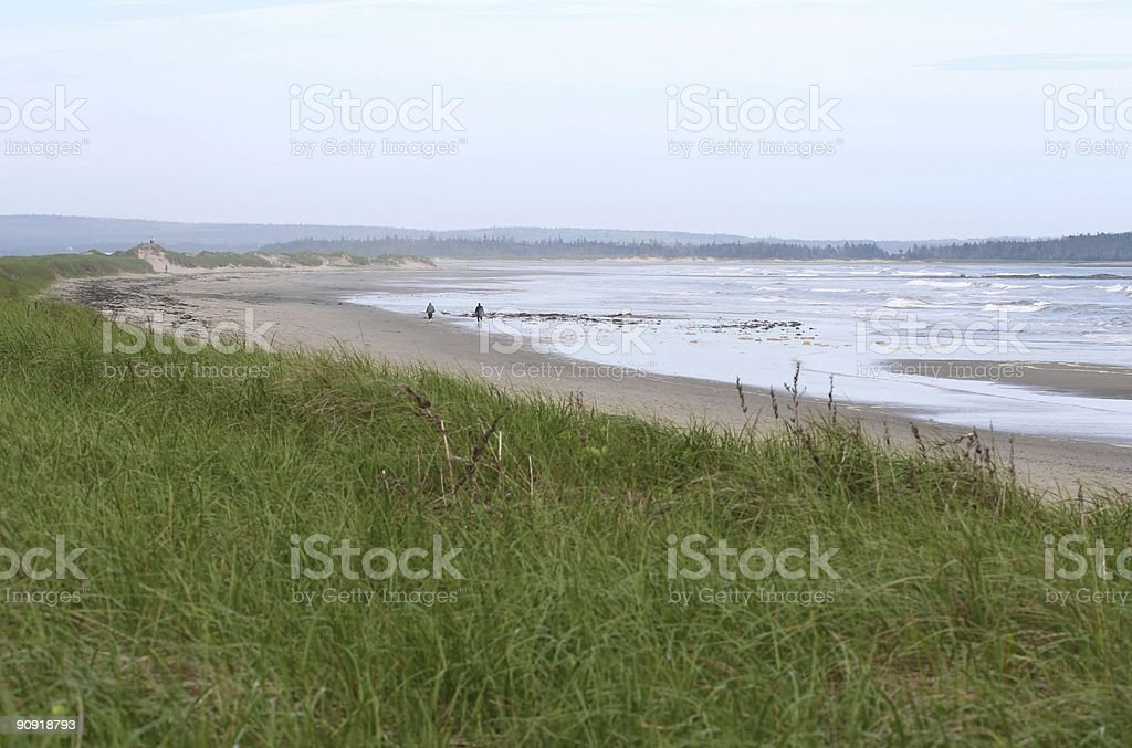 Martinique Beach Stock Photo - Download Image Now - iStock