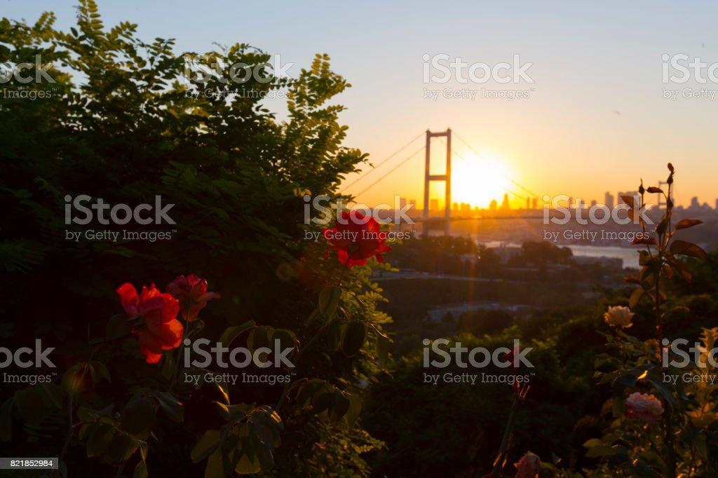 Şehit Köprüsü (15 Temmuz Sehitler Koprusu) Boğaziçi Köprüsü gece Istanbul, Türkiye stok fotoğrafı