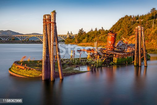 The Mary D. Hume was a steamer built at Gold Beach, Oregon in 1881, by R. D. Hume, a pioneer and early businessman in that area. Gold Beach was then called Ellensburg. The Hume had a long career, first hauling goods between Oregon and San Francisco, then as a whaler in Alaska, as a service vessel in the Alaskan cannery trade, then as a tugboat. She was retired in 1977 and returned to Gold Beach. In 1985 she sank in the Rogue River and has remained there ever since as a derelict vessel on the shoreline. The Hume is listed on the National Register of Historic Places.