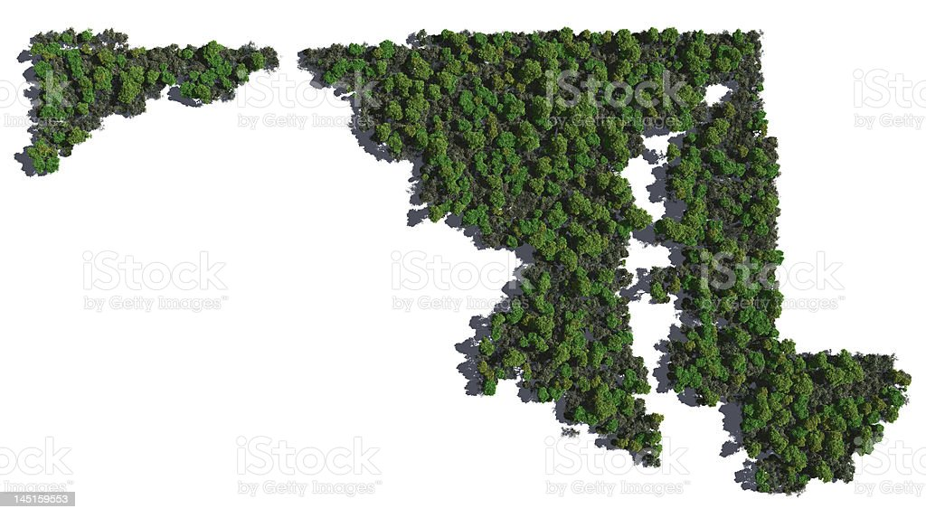 Maryland in Trees stock photo