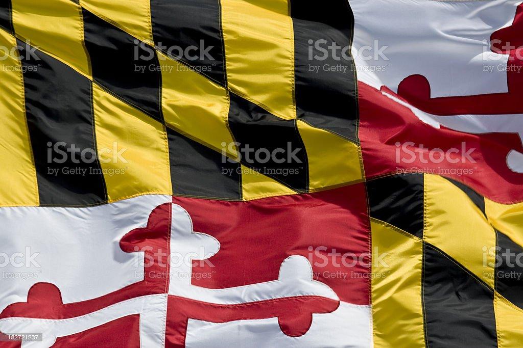 Maryland State Flag Closeup stock photo