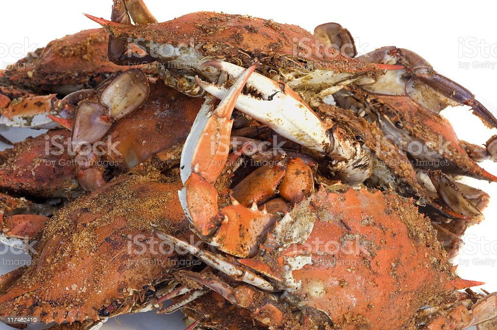 Maryland Steamed Crabs royalty-free stock photo