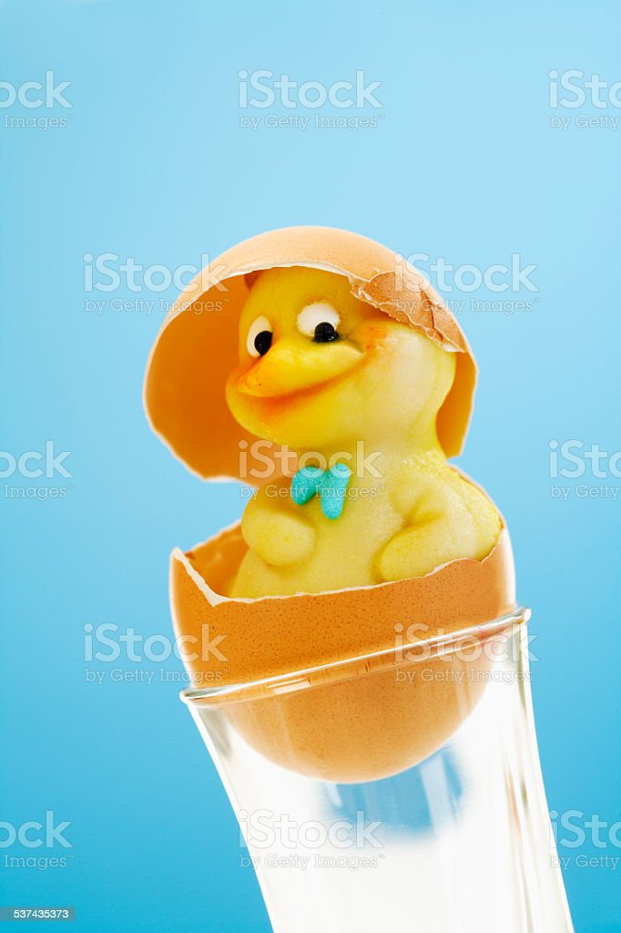 Marzipan chick figurine in eggshell stock photo