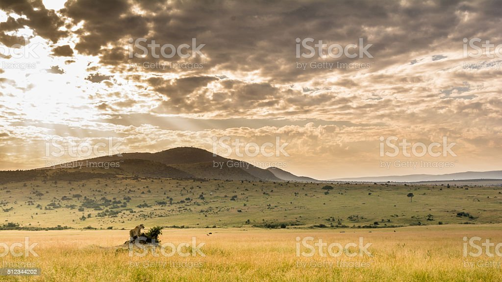 Masai Maras Landschaft stock photo