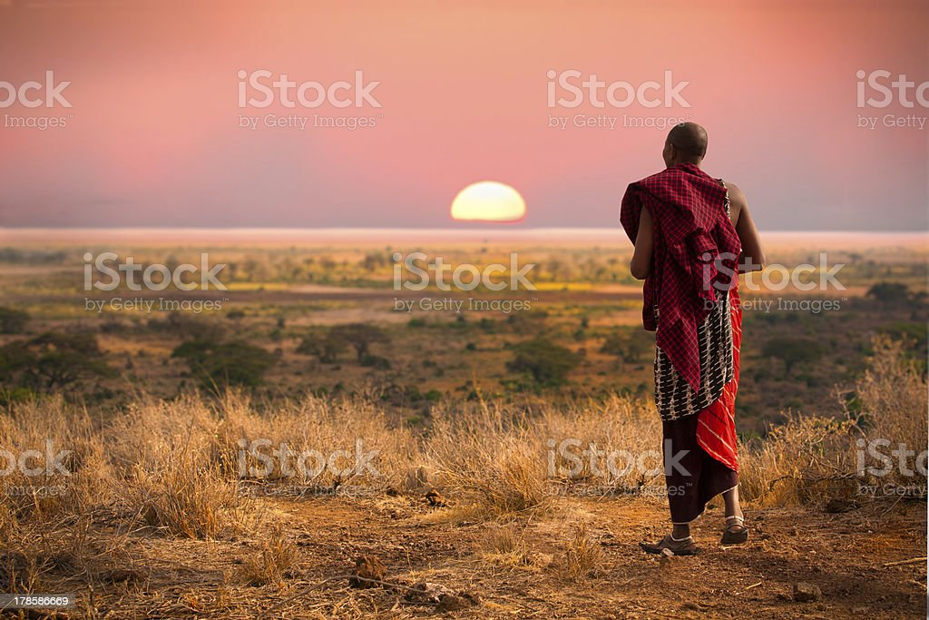 Masai warrior at sunset. stock photo
