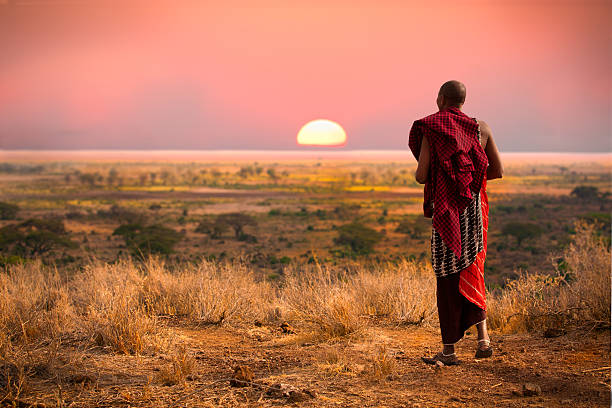masai warrior at sunset. - african culture stock photos and pictures