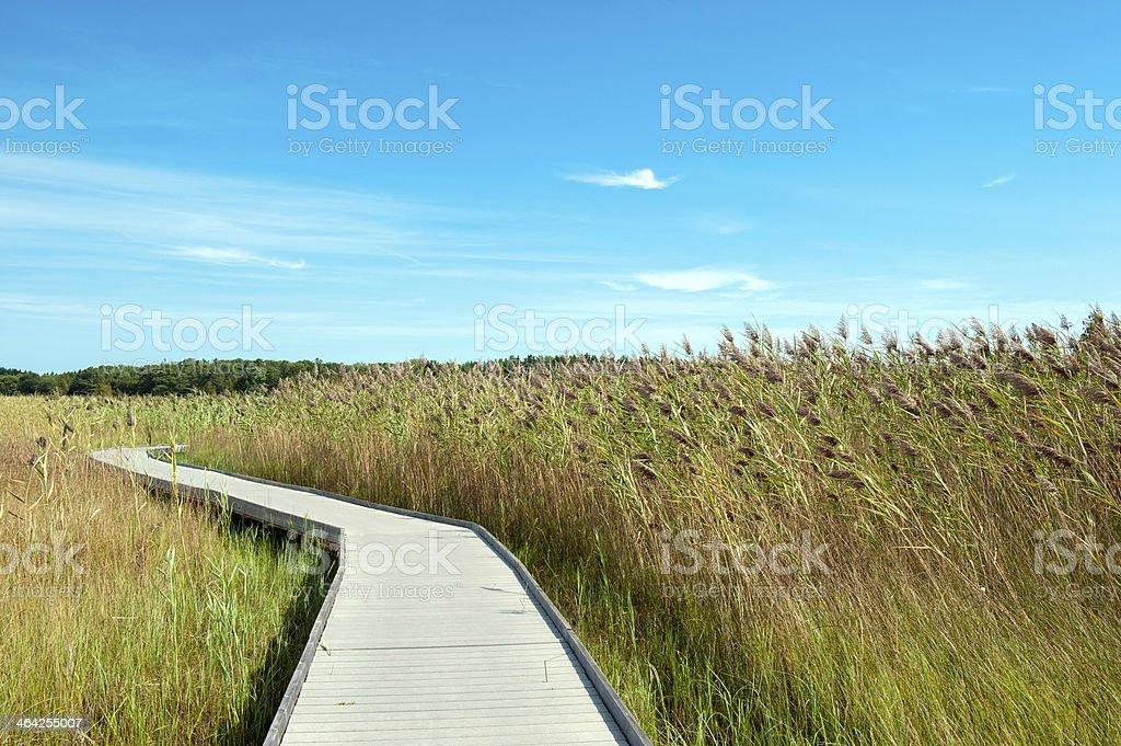 Mash Boardwalk royalty-free stock photo