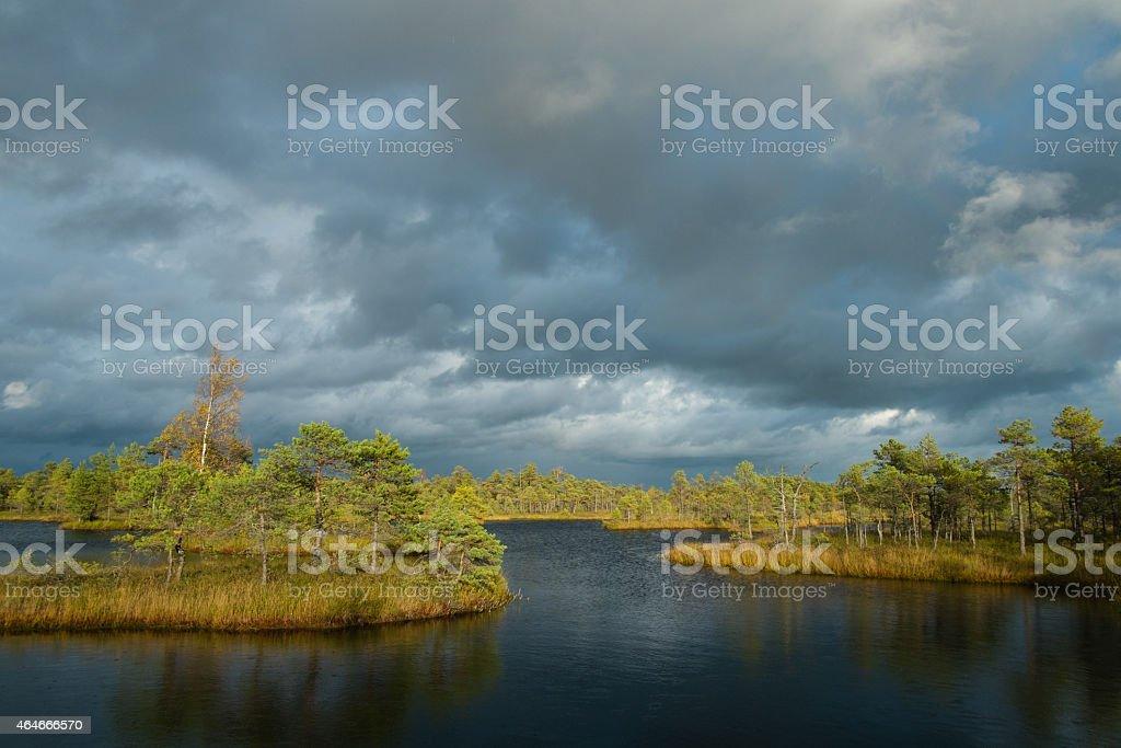 Mash lake with islands stock photo