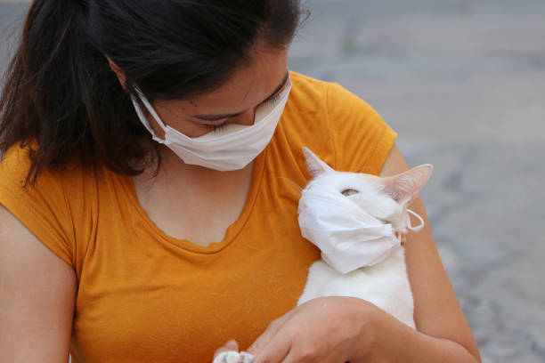 Masked asian woman and her cat prevent germs tiny particle or virus picture id1212851229?b=1&k=6&m=1212851229&s=612x612&w=0&h=hhn72os6rljzkuqzq1c2yb9ls8ilitcr5uo2dvz3zzk=