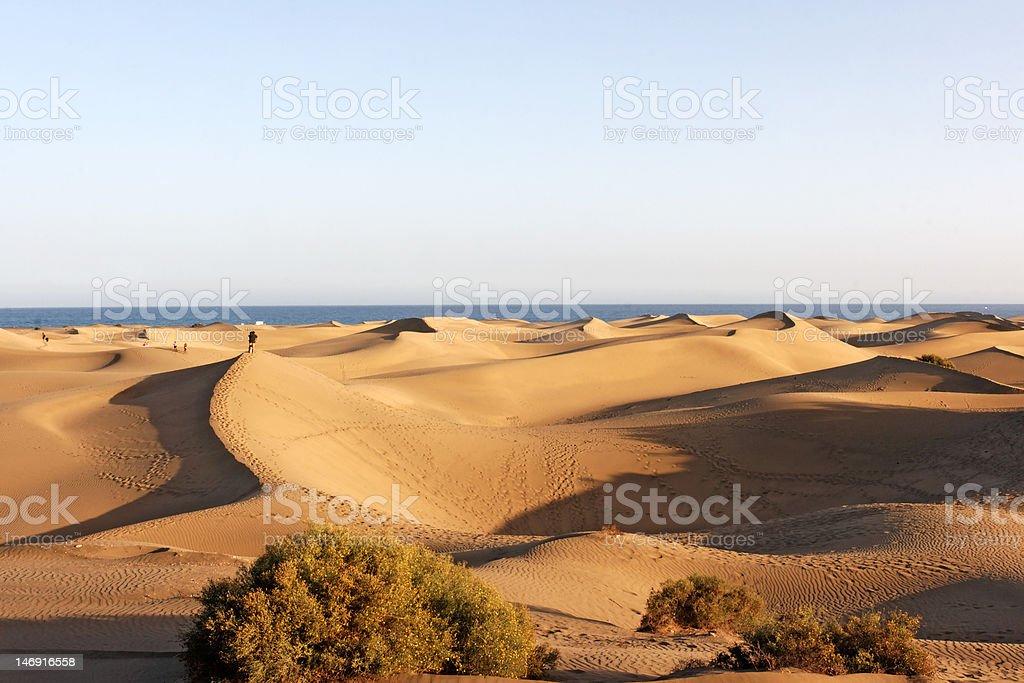 Maspalomas / Gran Canaria / Canary Islands / Spain stock photo