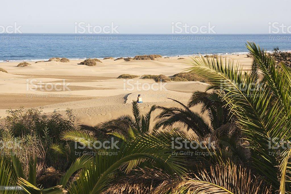 Maspalomas, Gran Canaria, Canary Islands, Spain stock photo