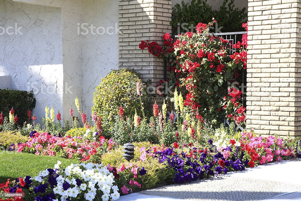 Mass Plantings Of Summer Annuals In The Front Garden Stock Photo