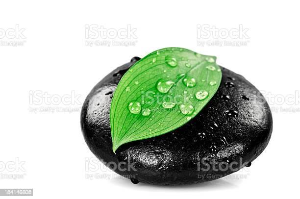 Photo of Massage Stone With Freshness Leaf