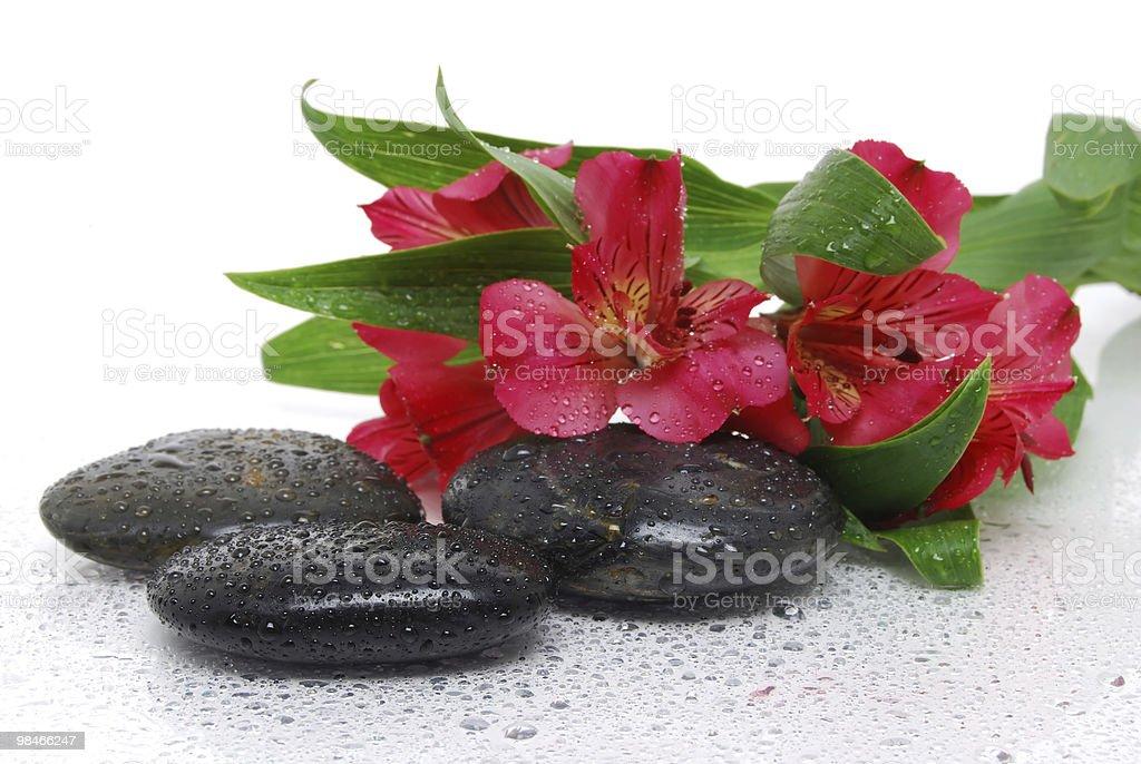 마시지한 Stones royalty-free 스톡 사진
