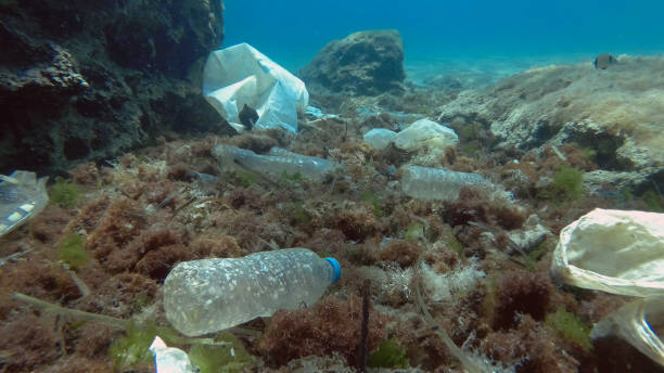 Massive plastic pollution of the ocean bottom. Seabed covered with a lot of plastic garbage. Bottles, bags and other plastic debris on seabed in Mediterranean Sea. Plastic pollution of the Ocean stock photo