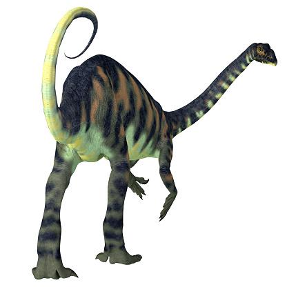 マッソスポンディルス恐竜の尾 - アフリカのストックフォトや画像を ...