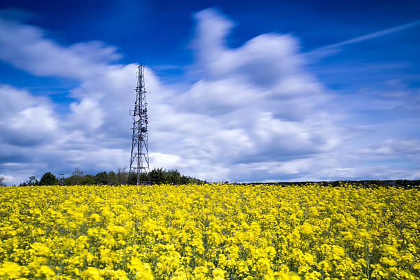 4G LTE Mast in a Rural Location stock photo