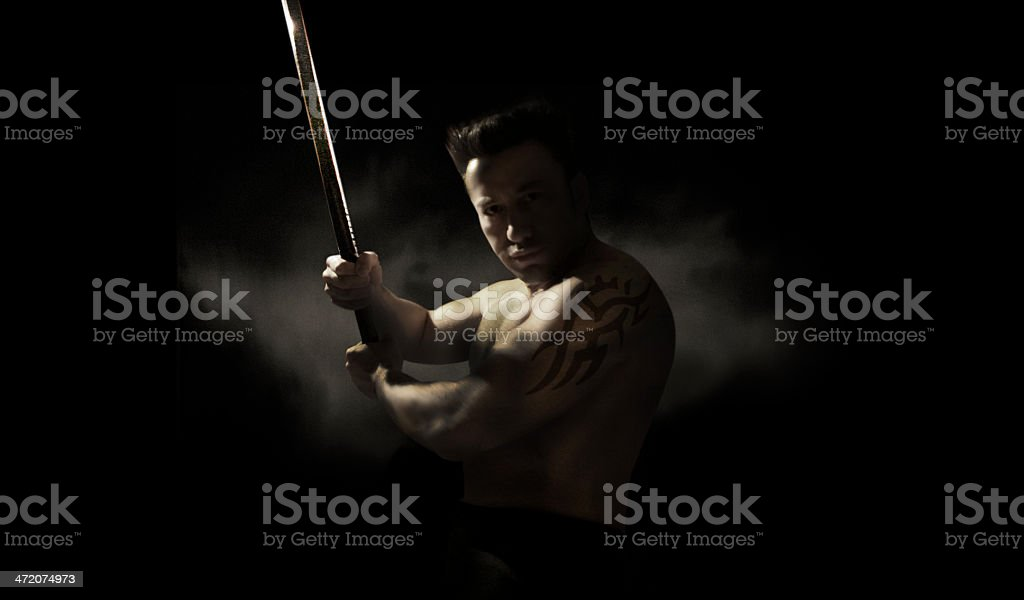Master of Martial Arts stock photo