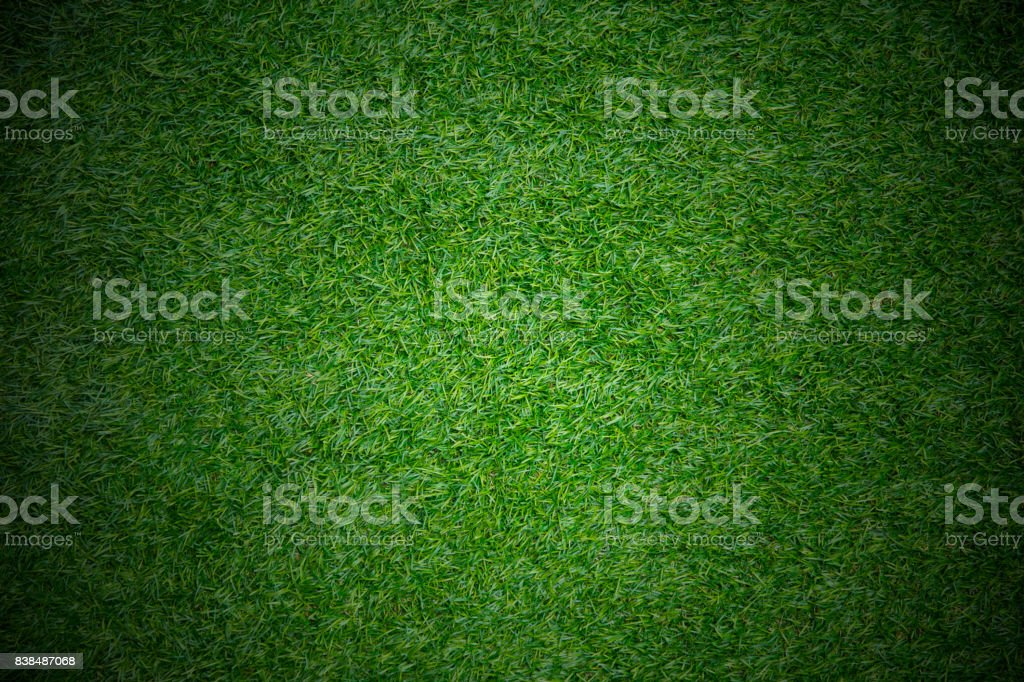 match play field sport concept grass background space for text stock photo