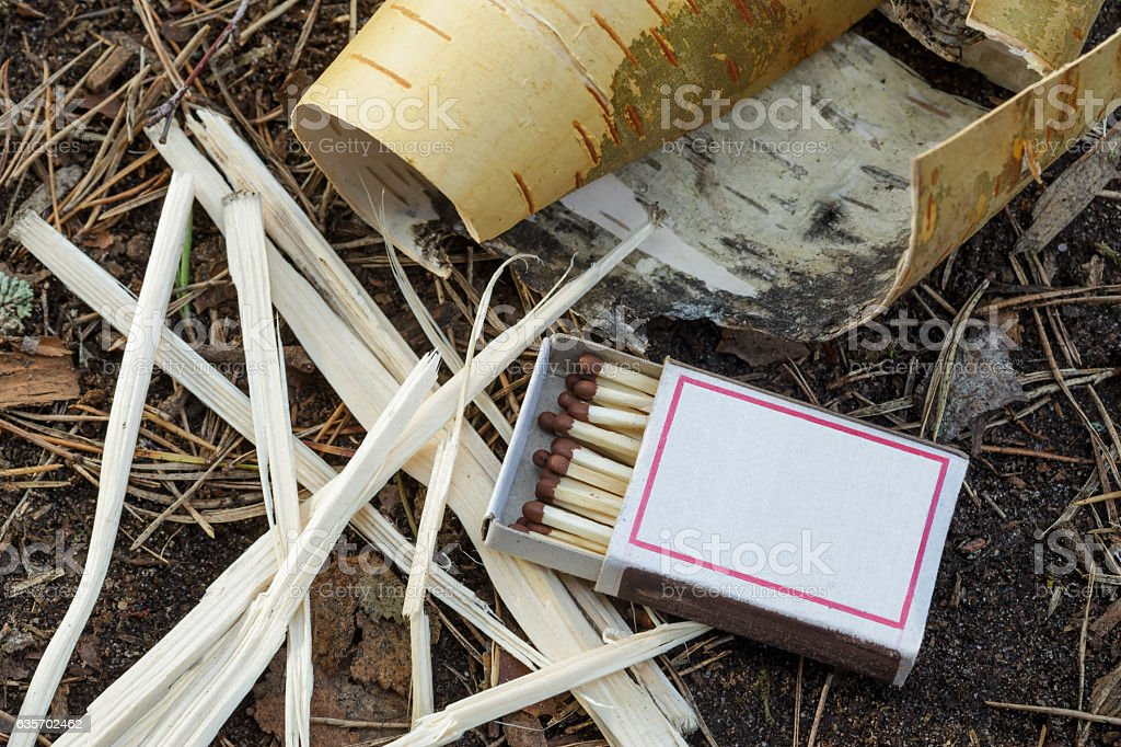 Matches and kindling for a fire in field conditions royalty-free stock photo