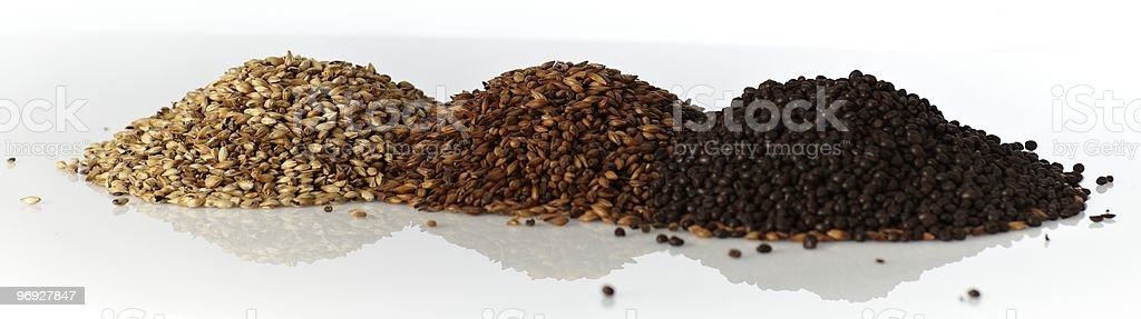 Materials for beer brewing royalty-free stock photo