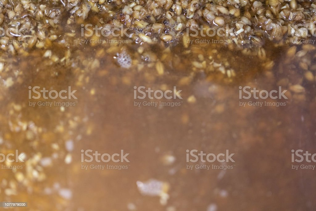 Materials For Beer Fermentation Beer Raw Materials And Production Of Beer  At The Home Stock Photo & More Pictures of Agriculture