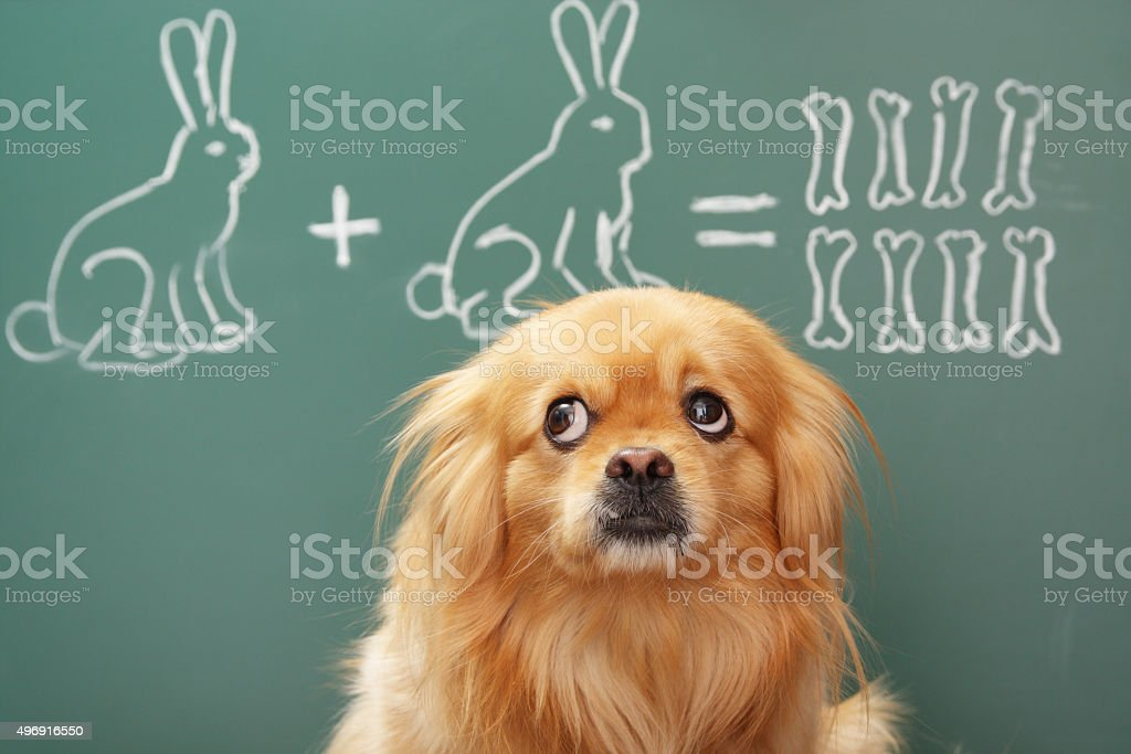 Mathematician stock photo