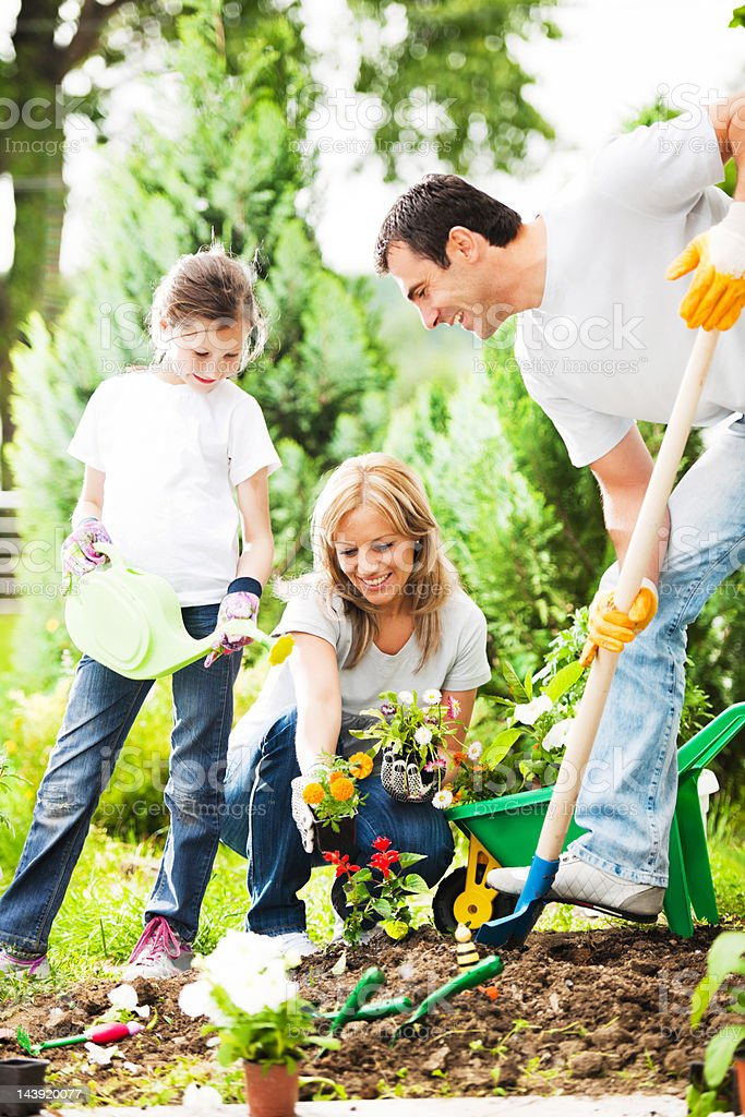 Mather, father and their daughter gardening on beautiful day. royalty-free stock photo
