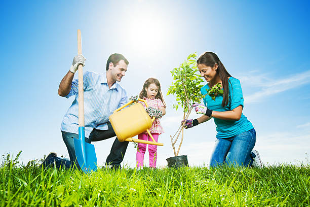 Mather, father and their daughter gardening on beautiful day stock photo