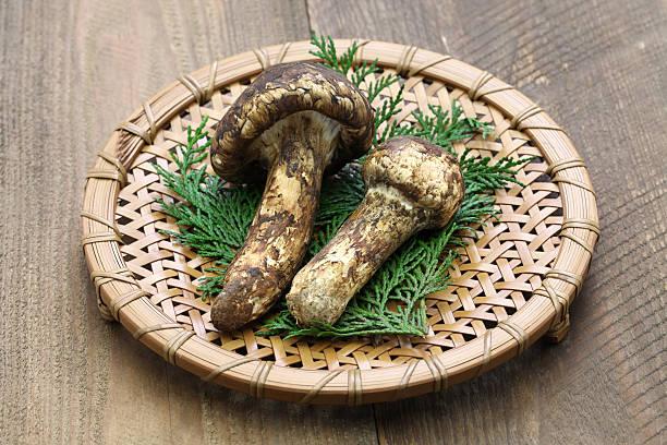 matsutake mushroom, japanese food - 松茸 ストックフォトと画像