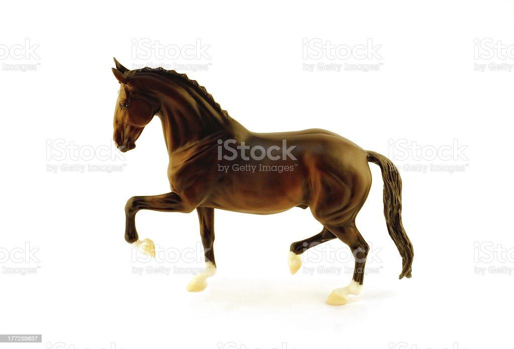 matt model horse breeds Hanover on a white background stock photo