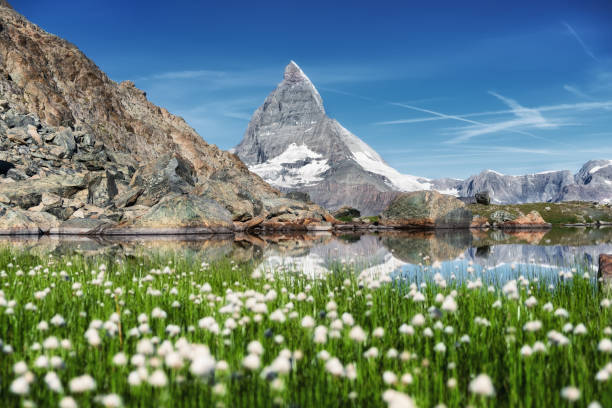 Matterhorn and and grass near lake at the morning time. Beautiful natural landscape in the Switzerland. Mountains landscape at the summer time Matterhorn and and grass near lake at the morning time. Beautiful natural landscape in the Switzerland. Mountains landscape at the summer time zermatt stock pictures, royalty-free photos & images