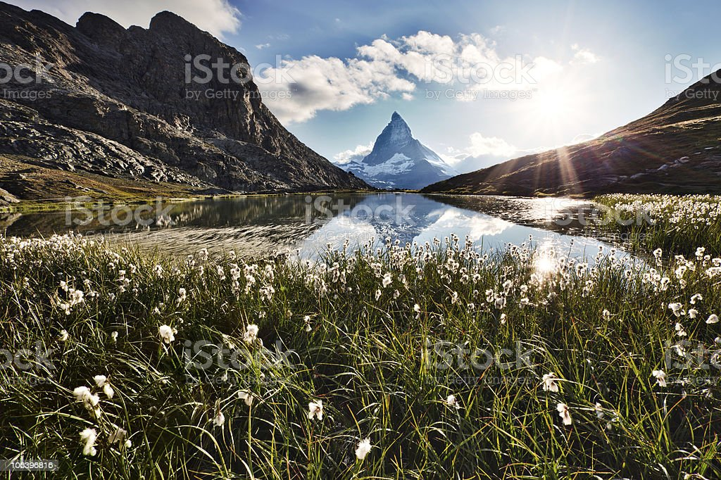 Matterhorn and flowers stock photo