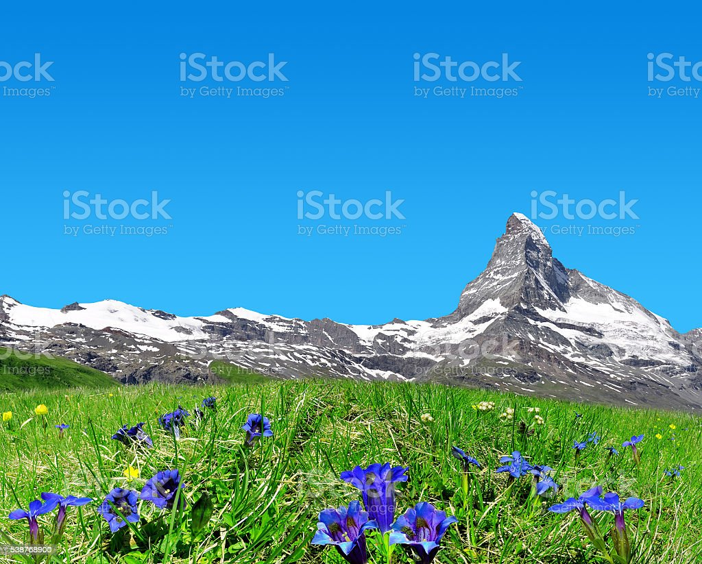Matterhorn in Pennine Alps, Switzerland stock photo