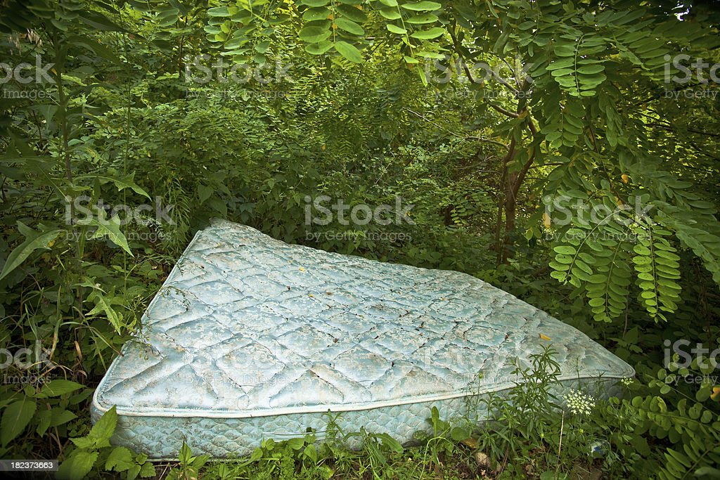 Mattress Dumped in a Forest royalty-free stock photo