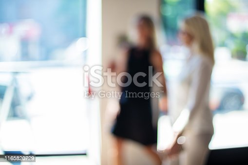 istock Mature Adult Businesswomen in a Corporate Office Workspace Out of Focus Business Backgrounds 1165820729
