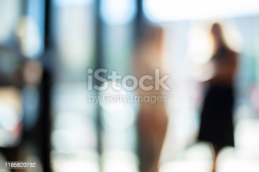 istock Mature Adult Businesswomen in a Corporate Office Workspace Out of Focus Business Backgrounds 1165820732