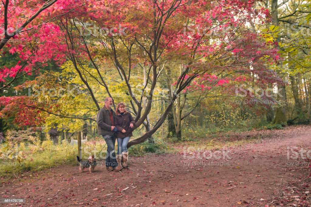 Mature adult Couple in autumn woodland stock photo
