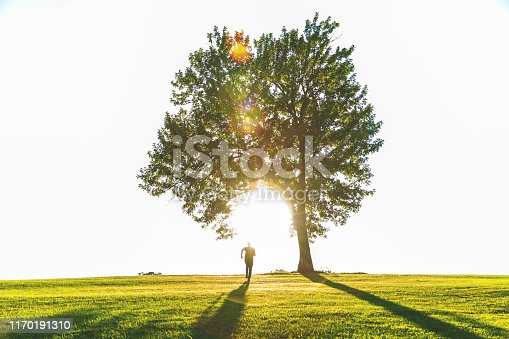 Midwest Nature Park Mature Adult Male Running Into The Sunset Under a Large Tree (Shot with Canon 5DS 50.6mp photos professionally retouched - Lightroom / Photoshop - original size 5792 x 8688 downsampled as needed for clarity and select focus used for dramatic effect)