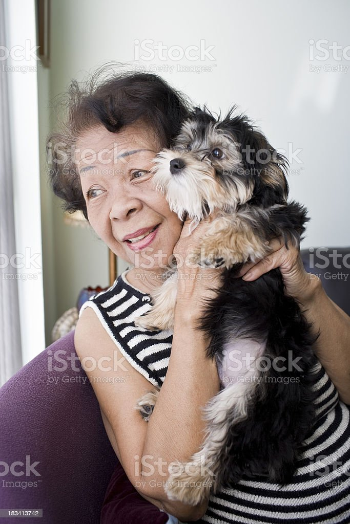 Mature Adult with Dog royalty-free stock photo