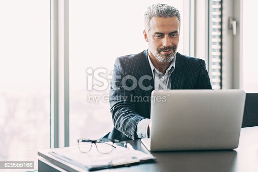 istock Mature businessman in the office 629555166