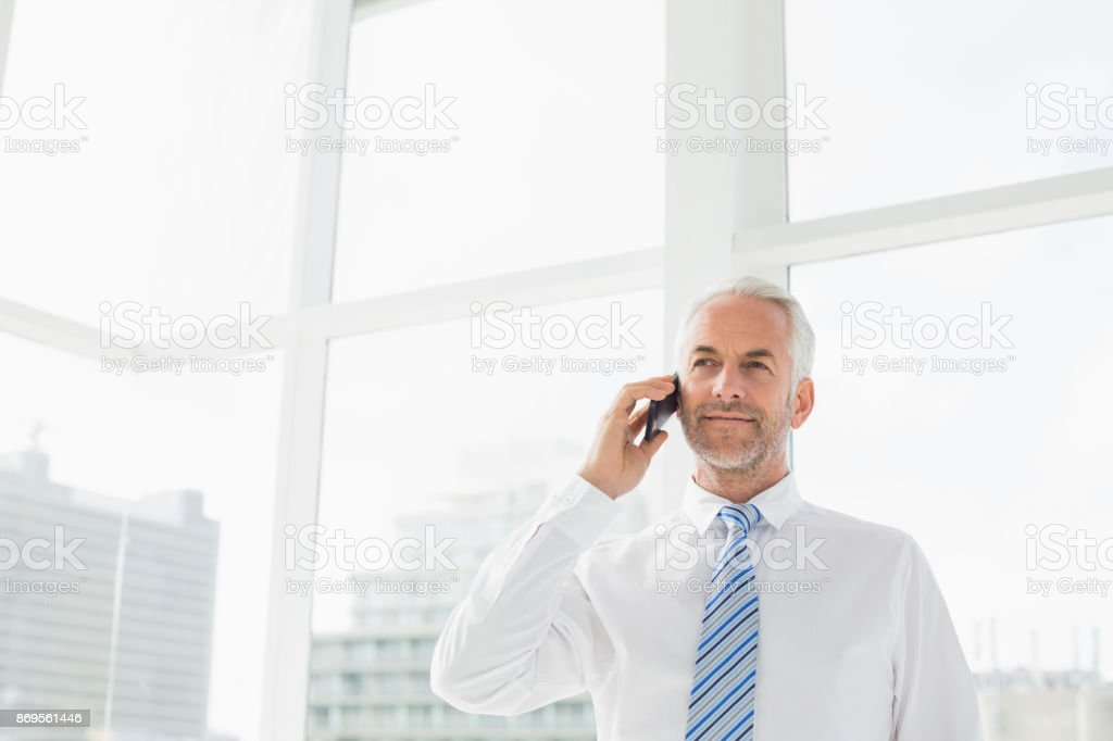 Mature businessman using mobile phone in office stock photo