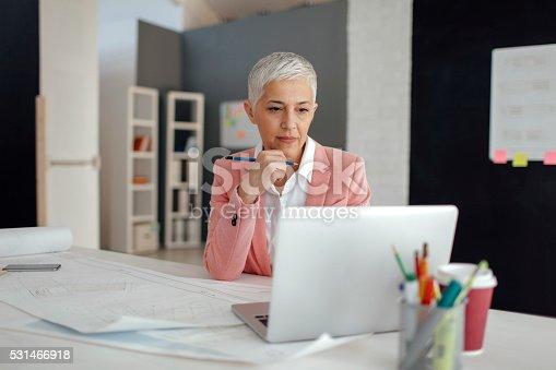 istock Mature Businesswoman In Her Office. 531466918