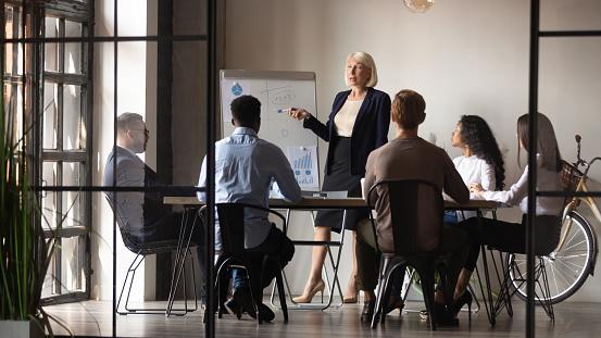 Reife Geschäftsfrau Mentor Coach Geben Flipchartpräsentation Bei Workshop Stockfoto und mehr Bilder von Aktiver Senior