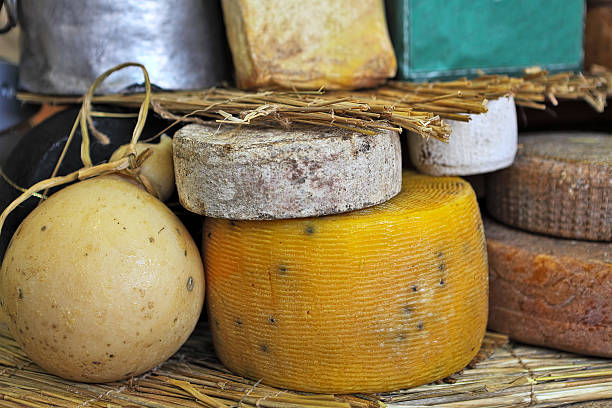 Mature cheese wheels on the stand. stock photo