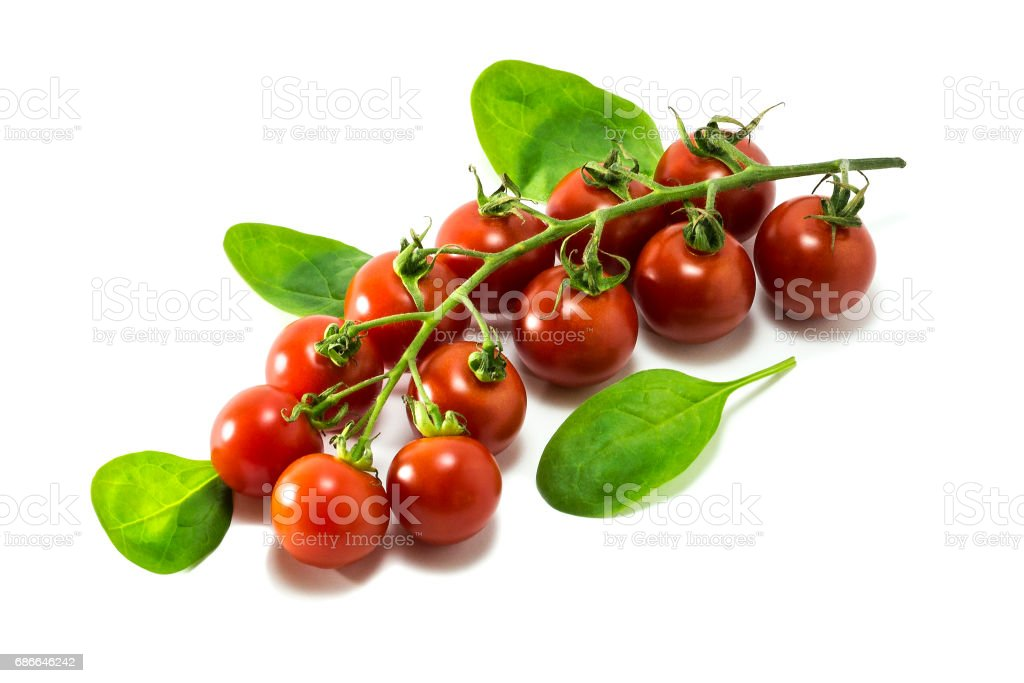 Mature cherry tomatoes o a white background. royalty-free stock photo