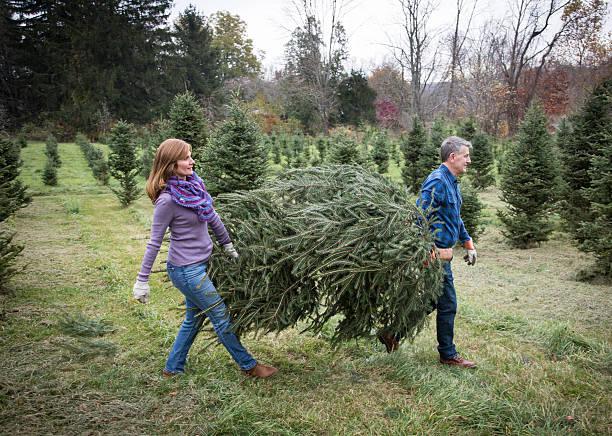 Mature Couple at Christmas Tree Farm - Photo