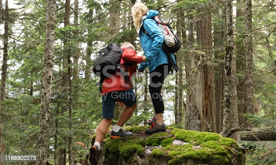 She offers a helping hand as they climb a mossy rock