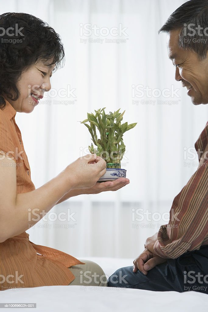 Mature couple looking at potted plant, smiling foto de stock libre de derechos